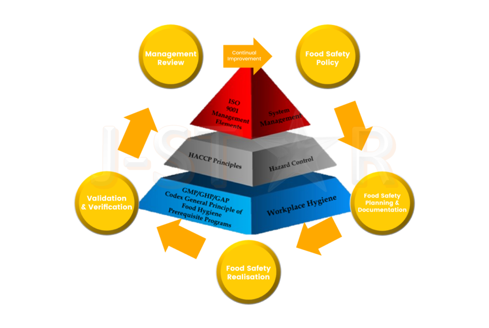 ISO 9001 Management